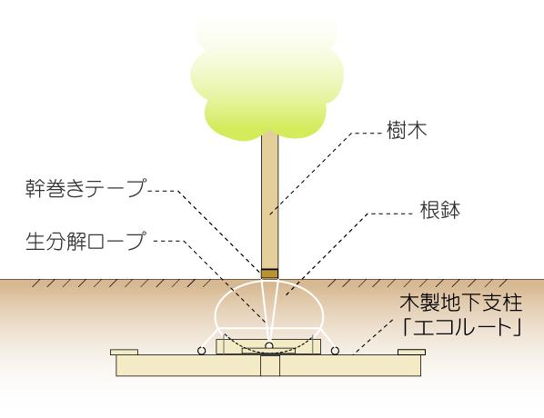 エコルート図面
